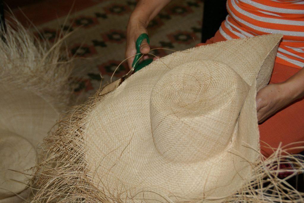 Motilado del Sombrero